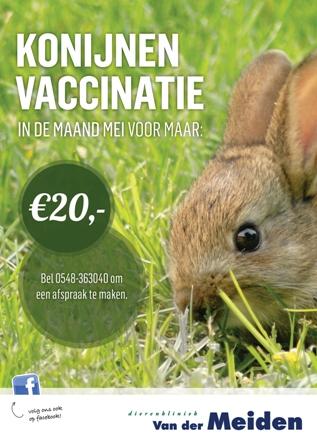 Konijnen_Vaccinatie_A2